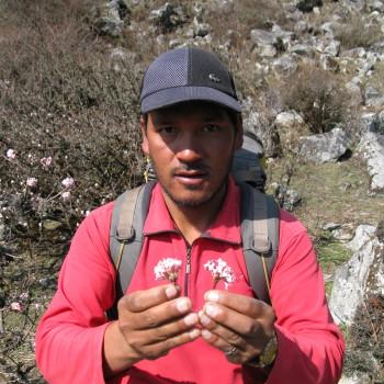 Tashi Tamang